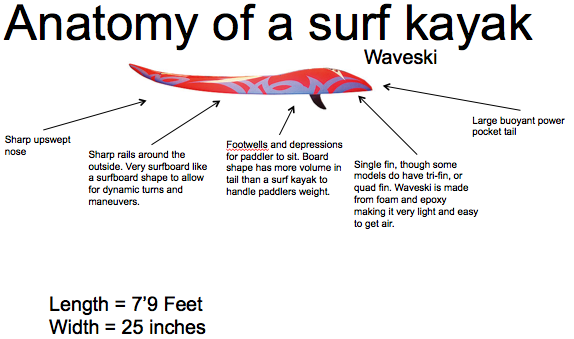 Waveski diagram for surf kayakers